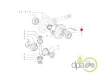 Fiat-Suruburi diferential-SURUB CARCASA DIFERENTIAL FATA